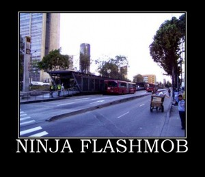 ninja-flash-mob